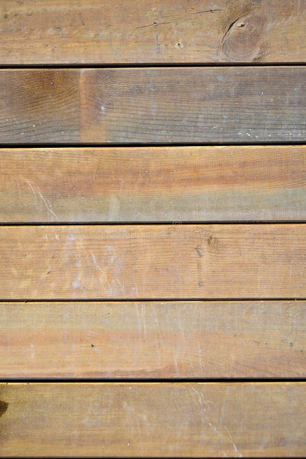 Textura de madeira do pinho Gr?o, tampa Revestimento, fibras fotos de stock royalty free