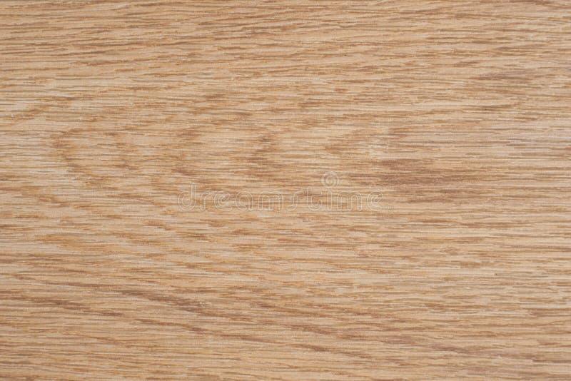 Textura de madeira E ilustração royalty free