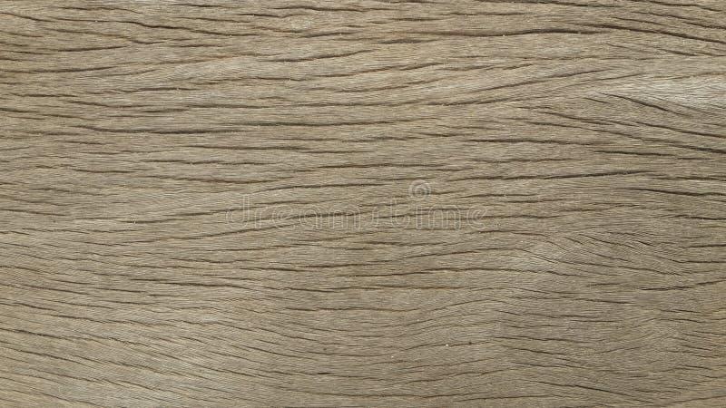 Textura de madeira Fundo de madeira papel de parede de madeira do fundo foto de stock royalty free