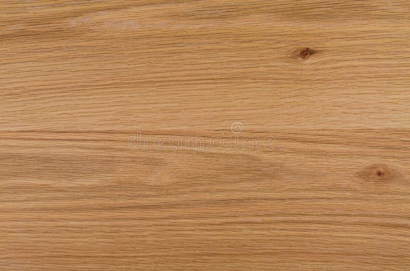 Textura de madeira natural do carvalho fotografia de stock