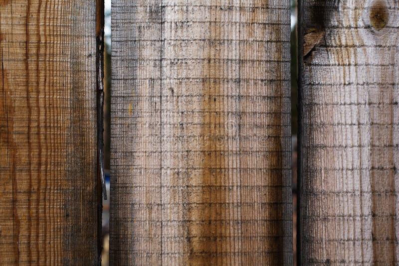 Textura de madeira natural velha da cerca imagens de stock royalty free