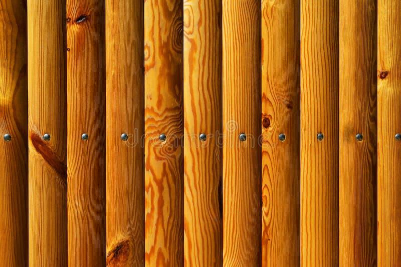 Textura de madeira para o fundo da Web foto de stock royalty free