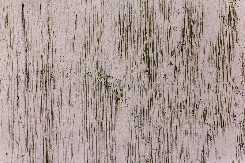 Textura de madeira pintada clara envelhecida e rachada fotos de stock royalty free