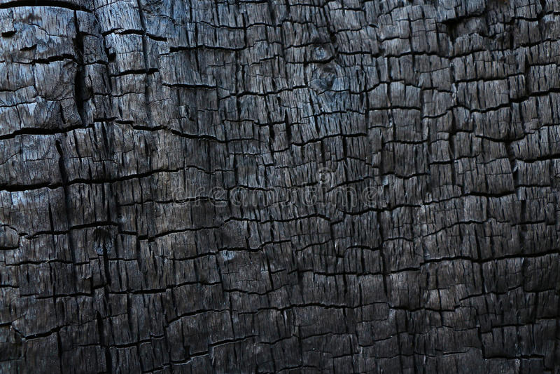 Textura de madeira queimada imagem de stock