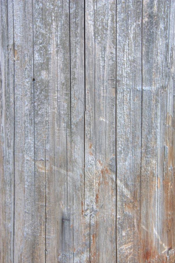Textura de madeira - telefone polo foto de stock