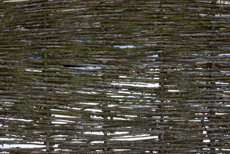 Textura de madeira de uma cerca de vime rural imagens de stock