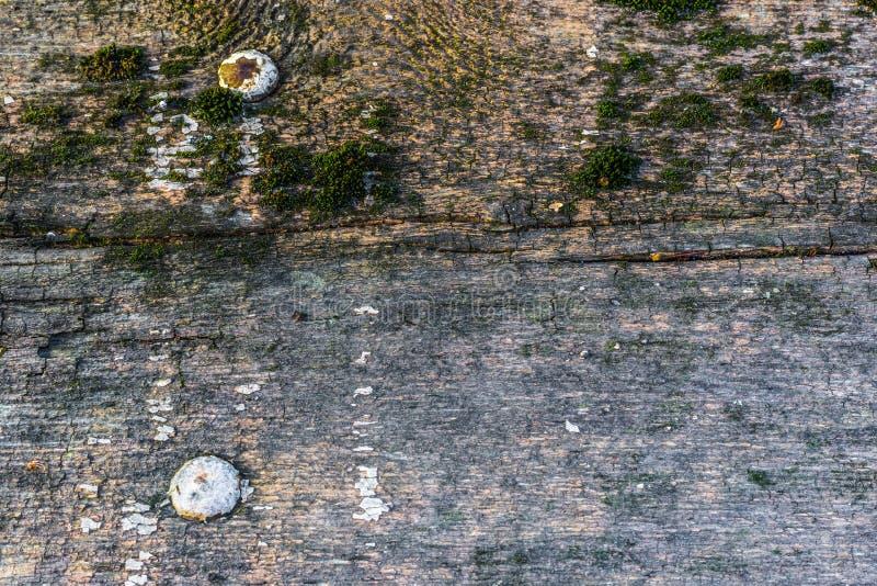 A textura de madeira velha com testes padrões e quebras naturais na superfície como o fundo Escureça do centro imagem de stock royalty free