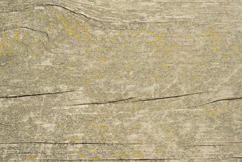 A textura de madeira velha com testes padrões naturais com cor rachada, fundo fotos de stock