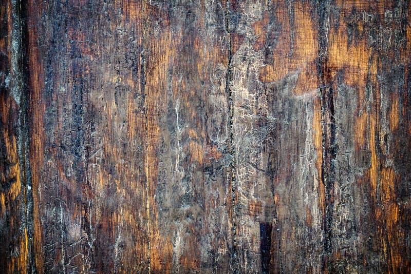 Textura de madeira velha da porta fotografia de stock royalty free
