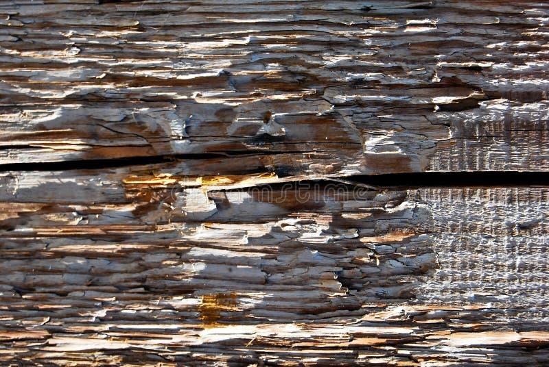 Textura de madeira velha do pinho Grão, tampa foto de stock