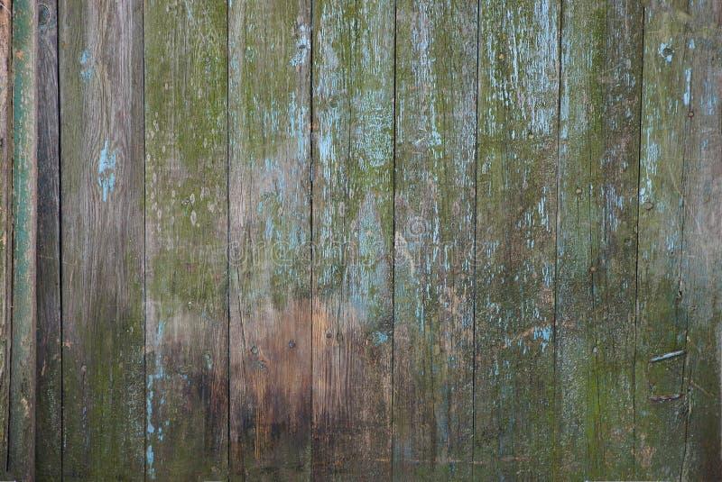 Textura de madeira verde cinzenta de uma série de placas finas na parede da cerca fotos de stock royalty free
