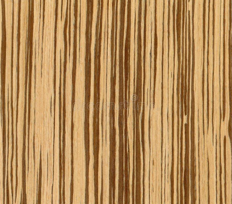 Textura de madeira verde-oliva fotos de stock royalty free