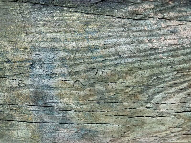Textura de madera fotografering för bildbyråer
