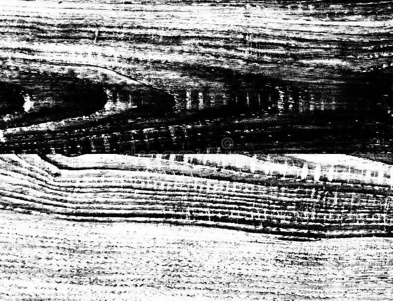 Textura de madera blanco y negro del alto contraste fotografía de archivo libre de regalías