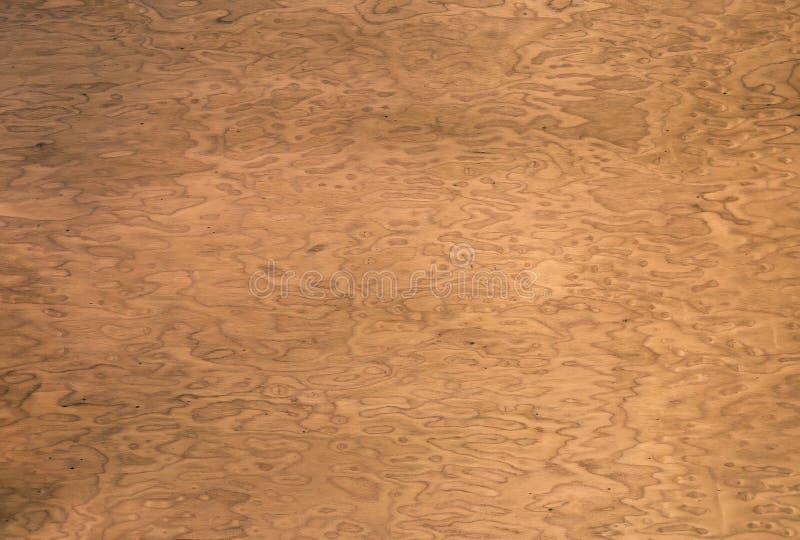 Textura de madera chapa decorativa raíz de la nuez Uso como fondo stock de ilustración