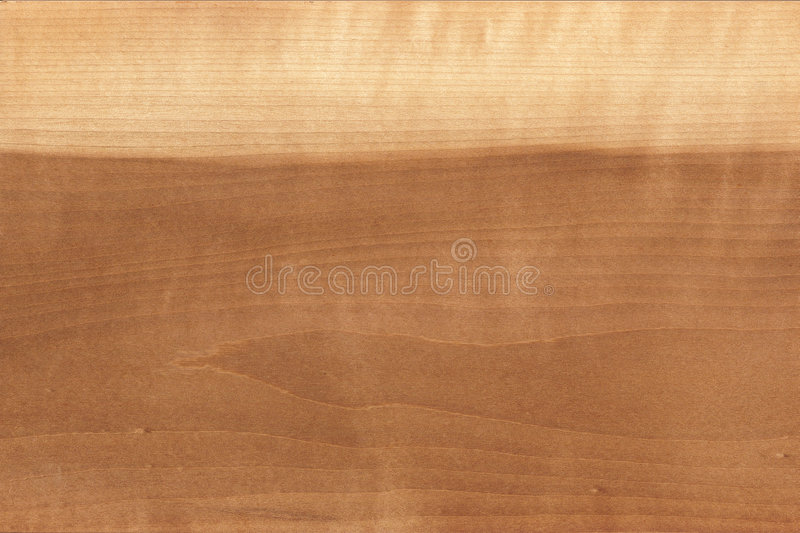 Textura de madera de la multa del modelo fotos de archivo