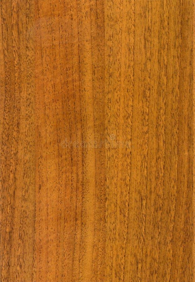 Textura de madera de la nuez del HQ fotografía de archivo libre de regalías
