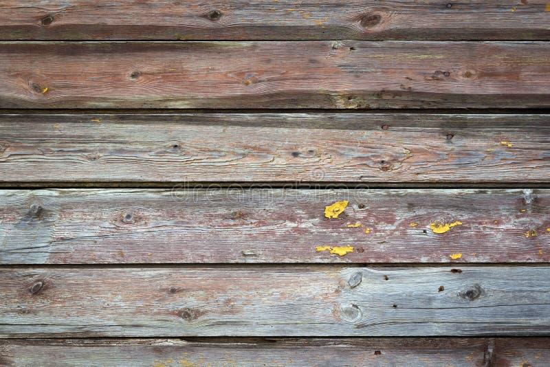Textura de madera de la pared para el uso del fondo imagen de archivo