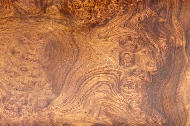 Textura de madera de la teca del oro fotos de archivo