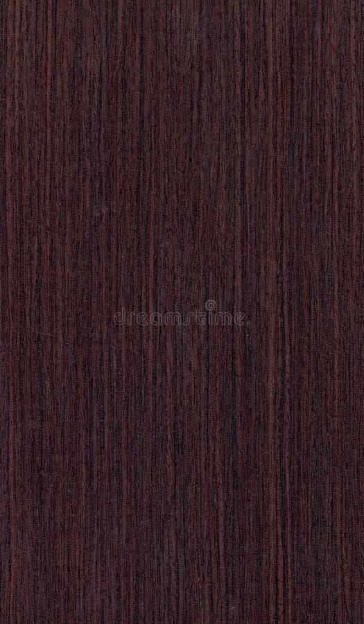 Textura de madera de Wenghe ilustración del vector