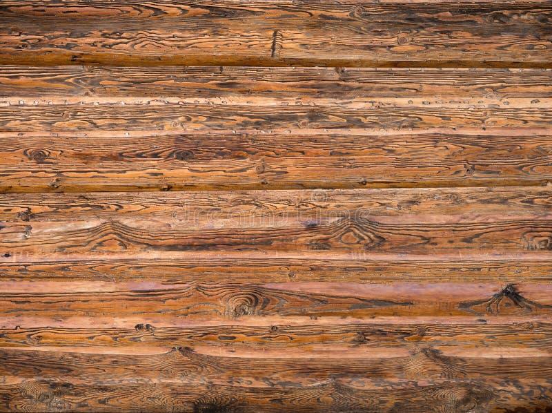 Textura de madera del macizo natural foto de archivo