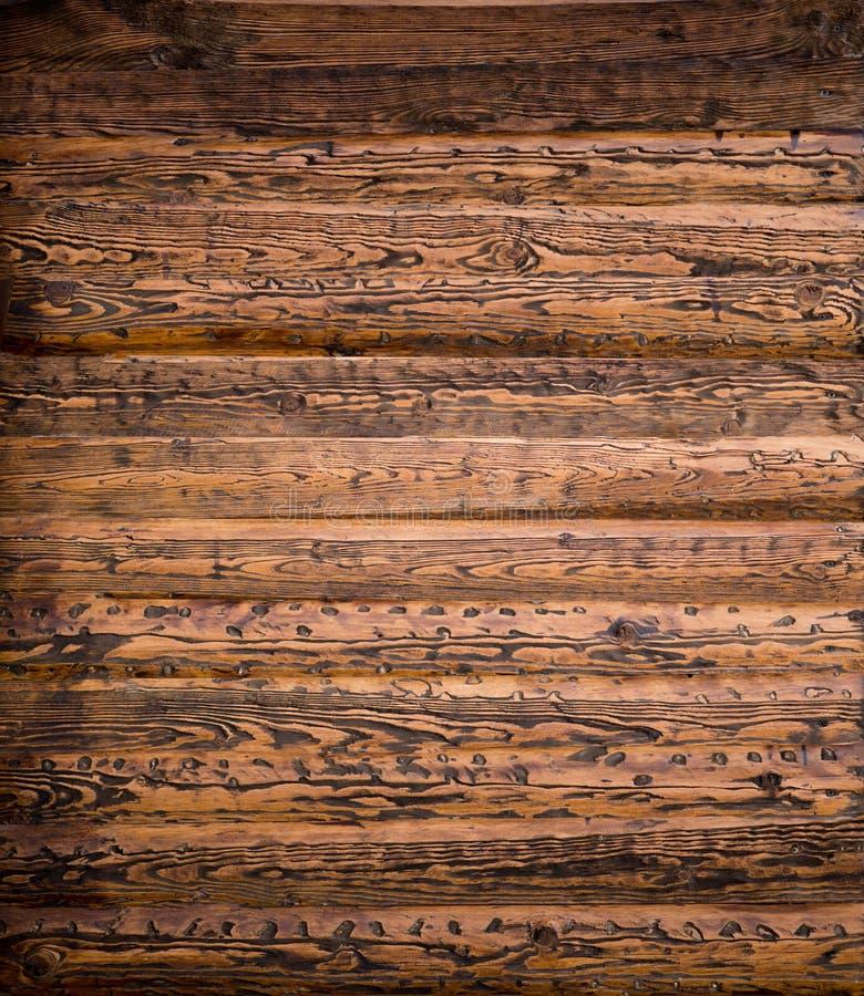 Textura de madera del macizo natural imagenes de archivo