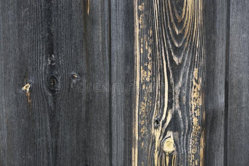 Textura de madera expresiva foto de archivo