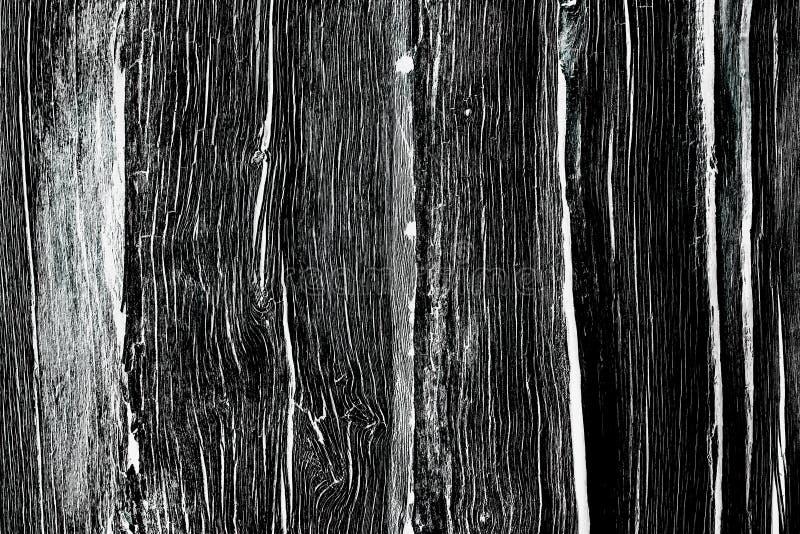 Textura de madera gris foto de archivo