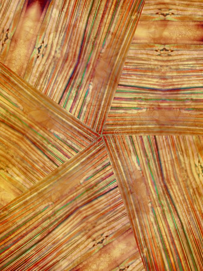 Textura De Madera Natural Del Grano Imagen De Archivo