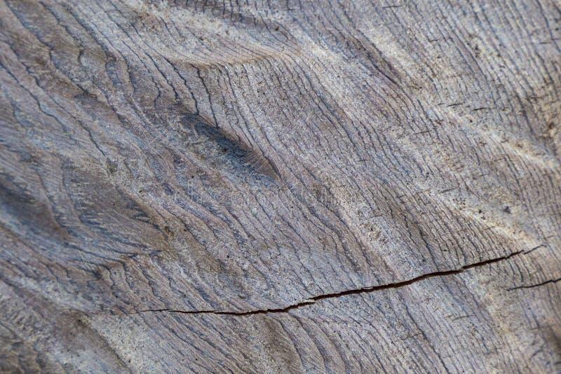Textura de madera ondulada fotos de archivo libres de regalías