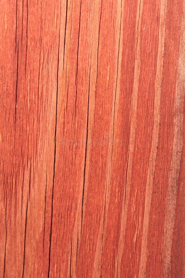 Textura de madera roja imagen de archivo libre de regalías