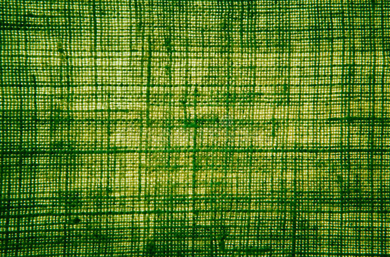 Textura de pano da fibra do cânhamo na cor verde com retroiluminado imagem de stock