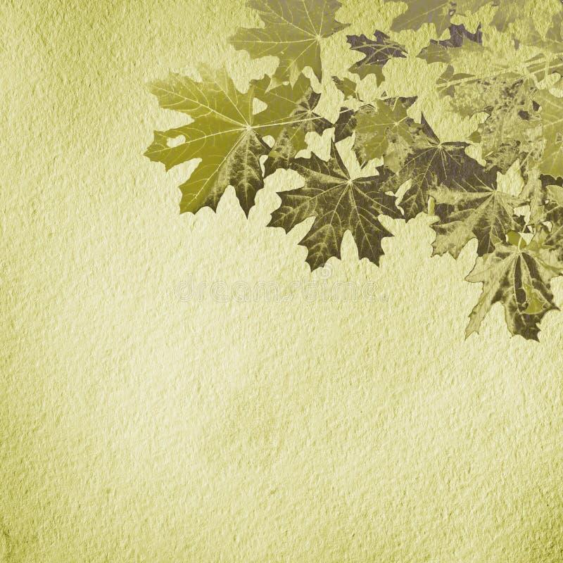 Textura de papel do Grunge. fundo abstrato da natureza foto de stock