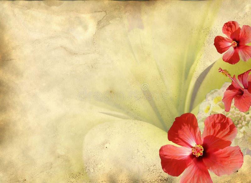 Textura de papel velha com teste padrão floral ilustração do vetor