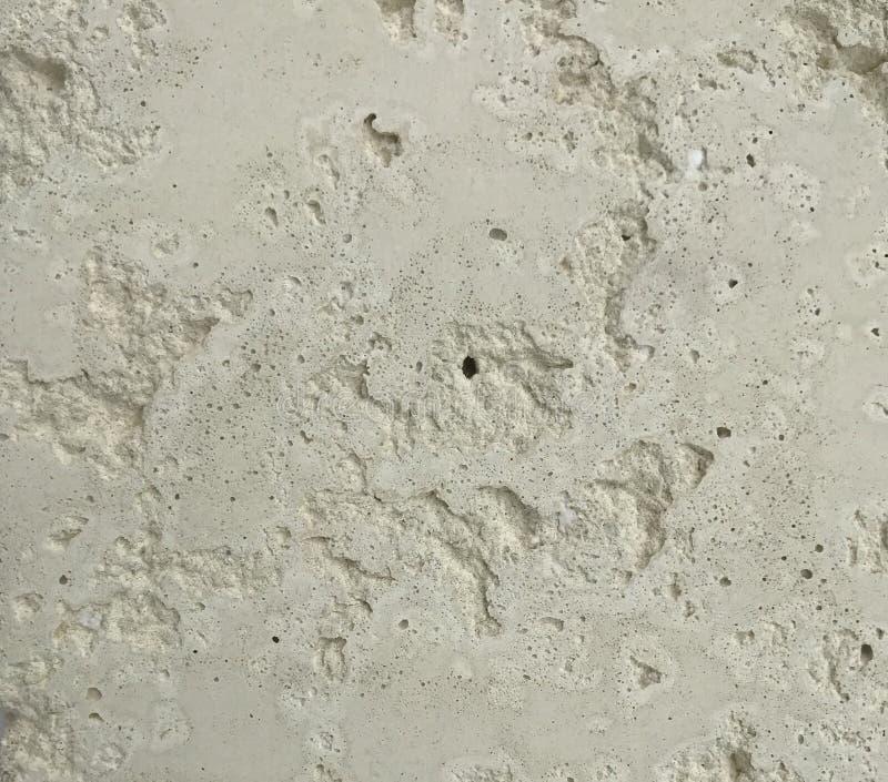 Textura de pedra branca do campeão fotos de stock