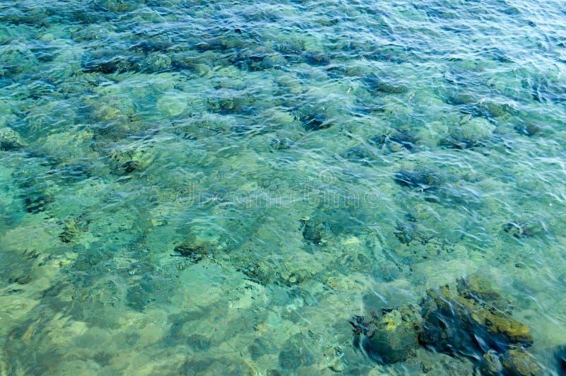 a textura de recifes de corais verdes bonitos no assoalho de mar é uma vista através do prisma da água transparente marinha salin imagem de stock royalty free