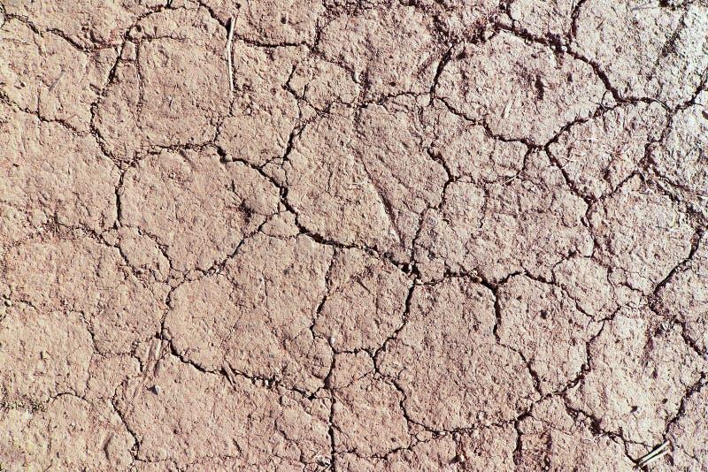 Textura de tierra secada fotografía de archivo