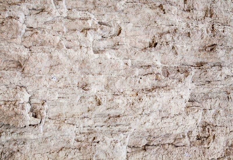 Textura de tierra imagen de archivo libre de regalías