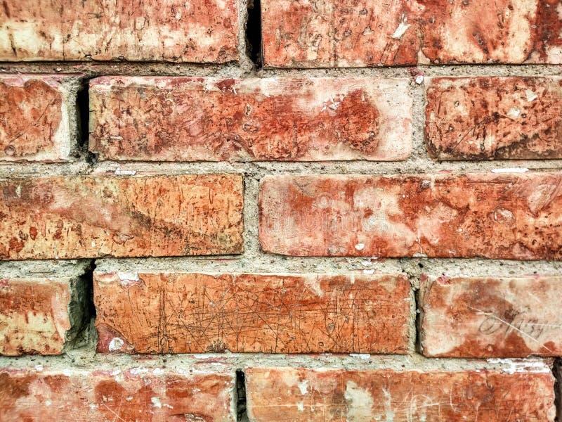 Textura de tijolos alaranjados foto de stock