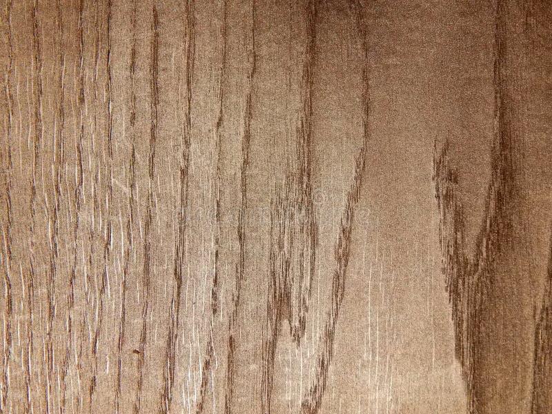 A textura de uma árvore coberta com o ouro imagem de stock