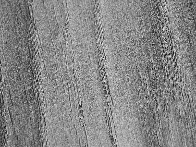 A textura de uma árvore coberta com a prata fotos de stock royalty free