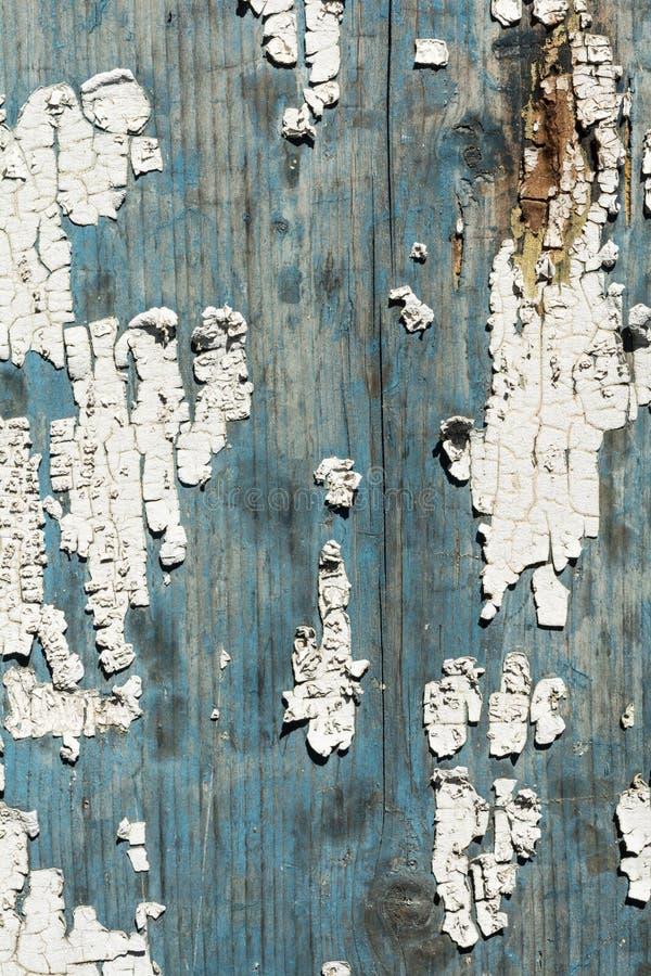 Textura de uma árvore velha com quebras, superfície de madeira pintada com pintura da casca, fundo abstrato do close-up fotos de stock