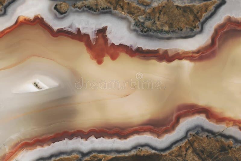 Textura de uma grande pedra lustrada da ágata do close-up da calcedônia no corte da seção foto de stock