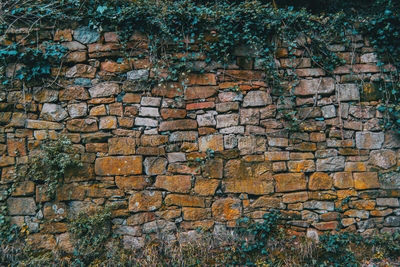 Textura de uma parede na montanha fotos de stock