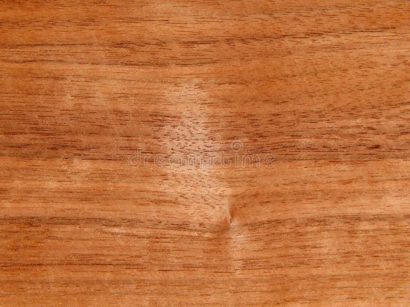 Textura de uma superfície de madeira de uma árvore de noz americana Folheado de madeira para o furnitur imagens de stock royalty free