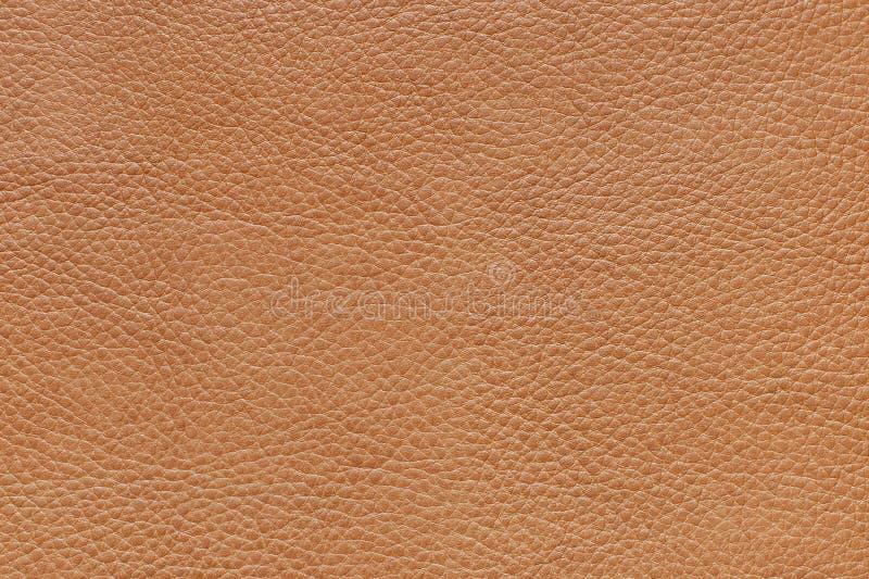 Textura de un cuero foto de archivo libre de regalías