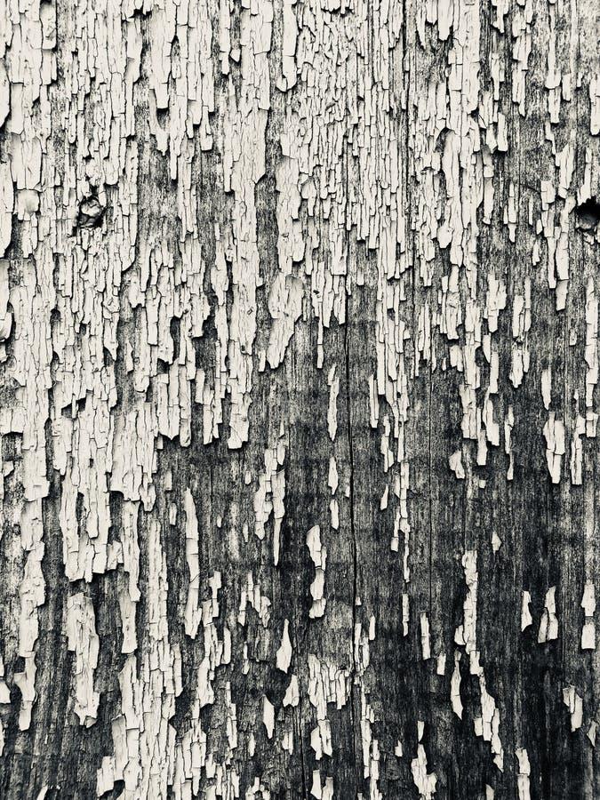 Textura de un tablero de madera con la pintura agrietada imagen de archivo