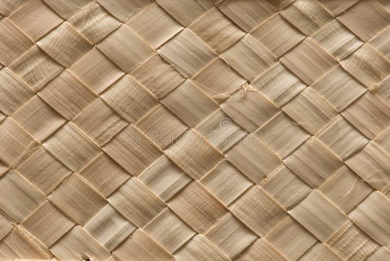 Textura de Wattled imagem de stock
