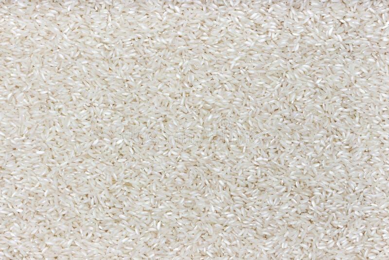Textura del arroz Fondo pulido de las avenas mondadas del arroz imagen de archivo libre de regalías