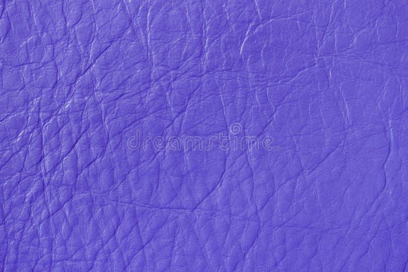 Textura del cuero auténtico, color de la lila, fondo, superficie Para su contexto, con el espacio de la copia fotos de archivo